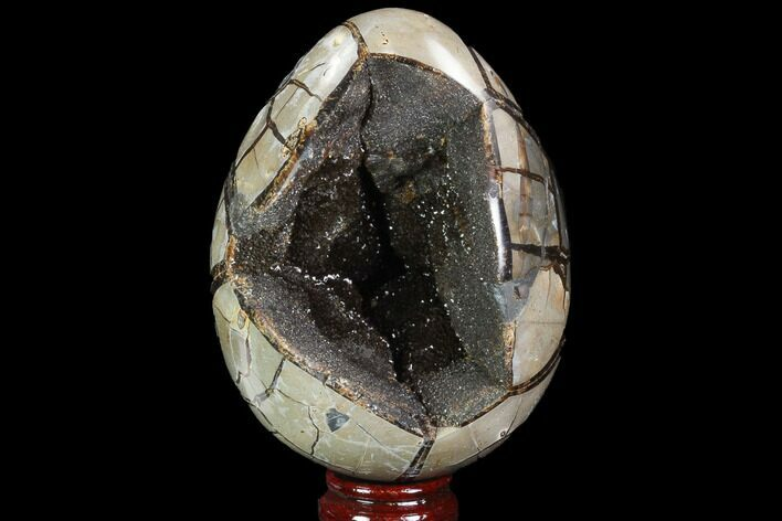 "5.6"" Septarian ""Dragon Egg"" Geode - Black Crystals"